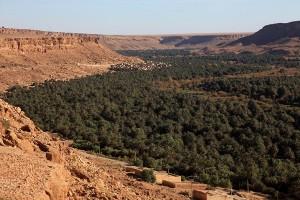 ziz valley morocco